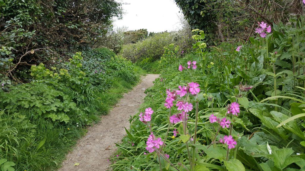 Wandelen Jersey, Guernsey