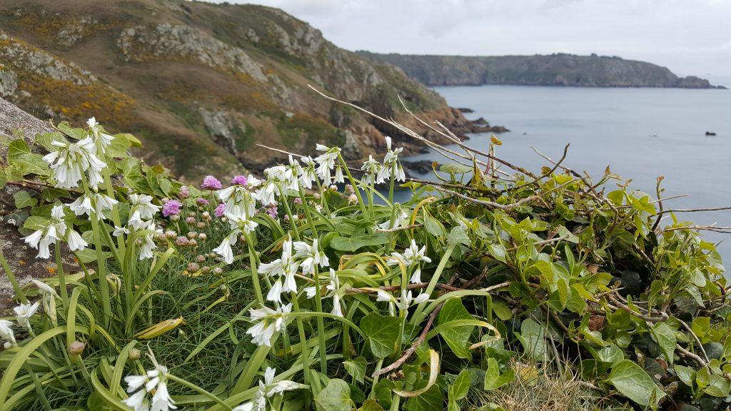 klifwandelingen, Kanaaleilanden, Jersey, Guernsey