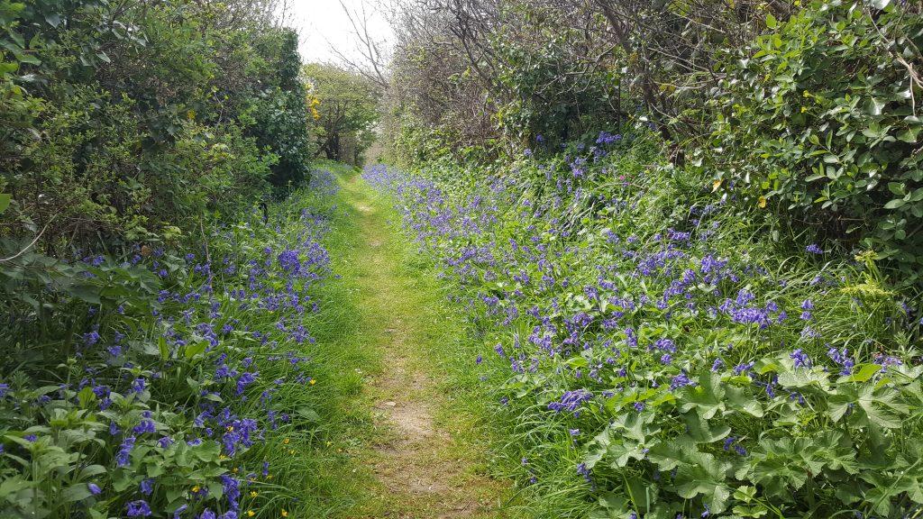 wandelen, Jersey, Guernsey
