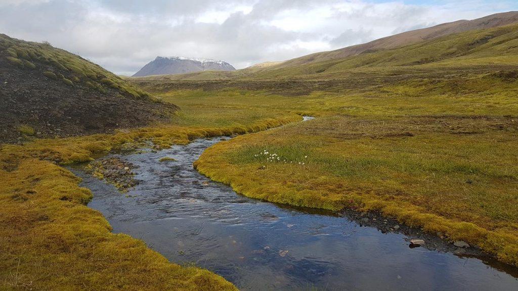 een riviertje in een groen landschap in IJsland