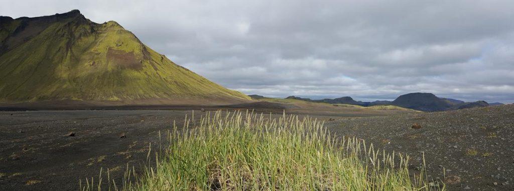 de uitgestrekte zwarte lavavelden bij Emstrur