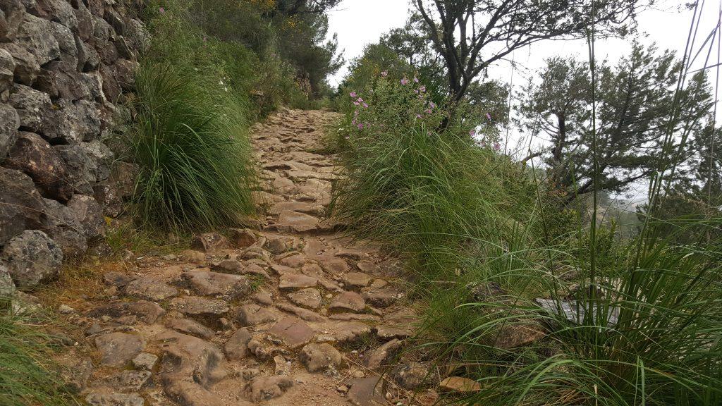 hiken, wandelen. GR221