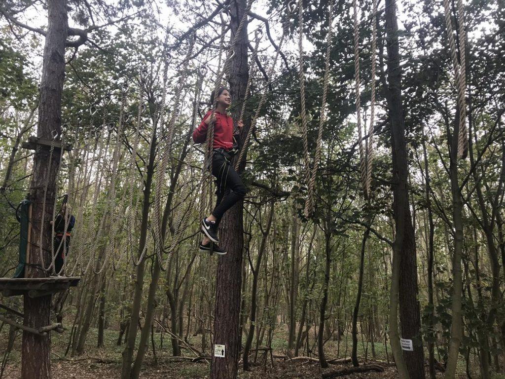 balancerend over het parcours in het klimbos