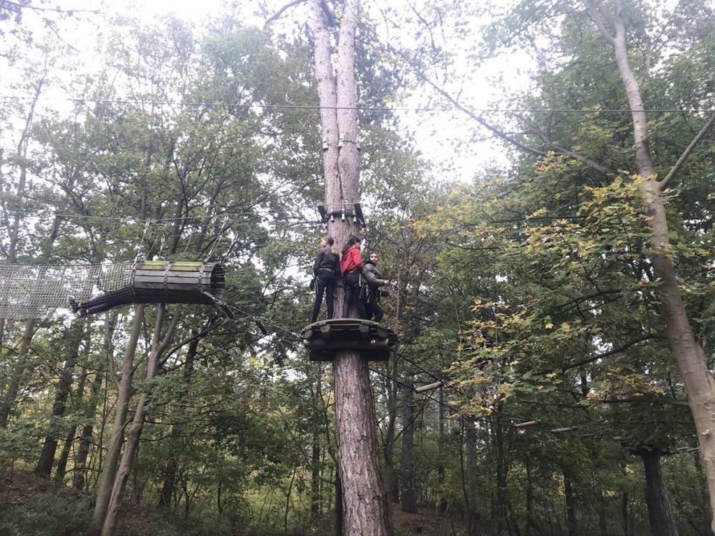 houten platform hoog in de bomen